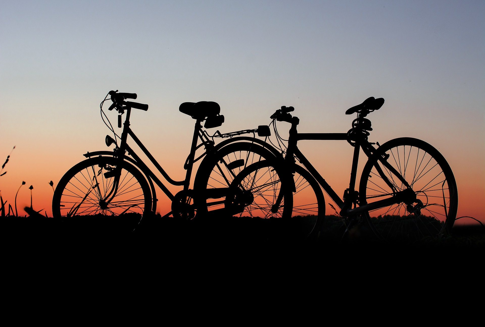Dating Ideas Pixabay bicycles-1906412_1920