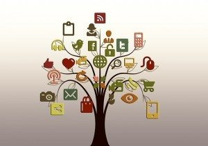 Internet social media cell phone secrecy Pixabay tree-200795_640