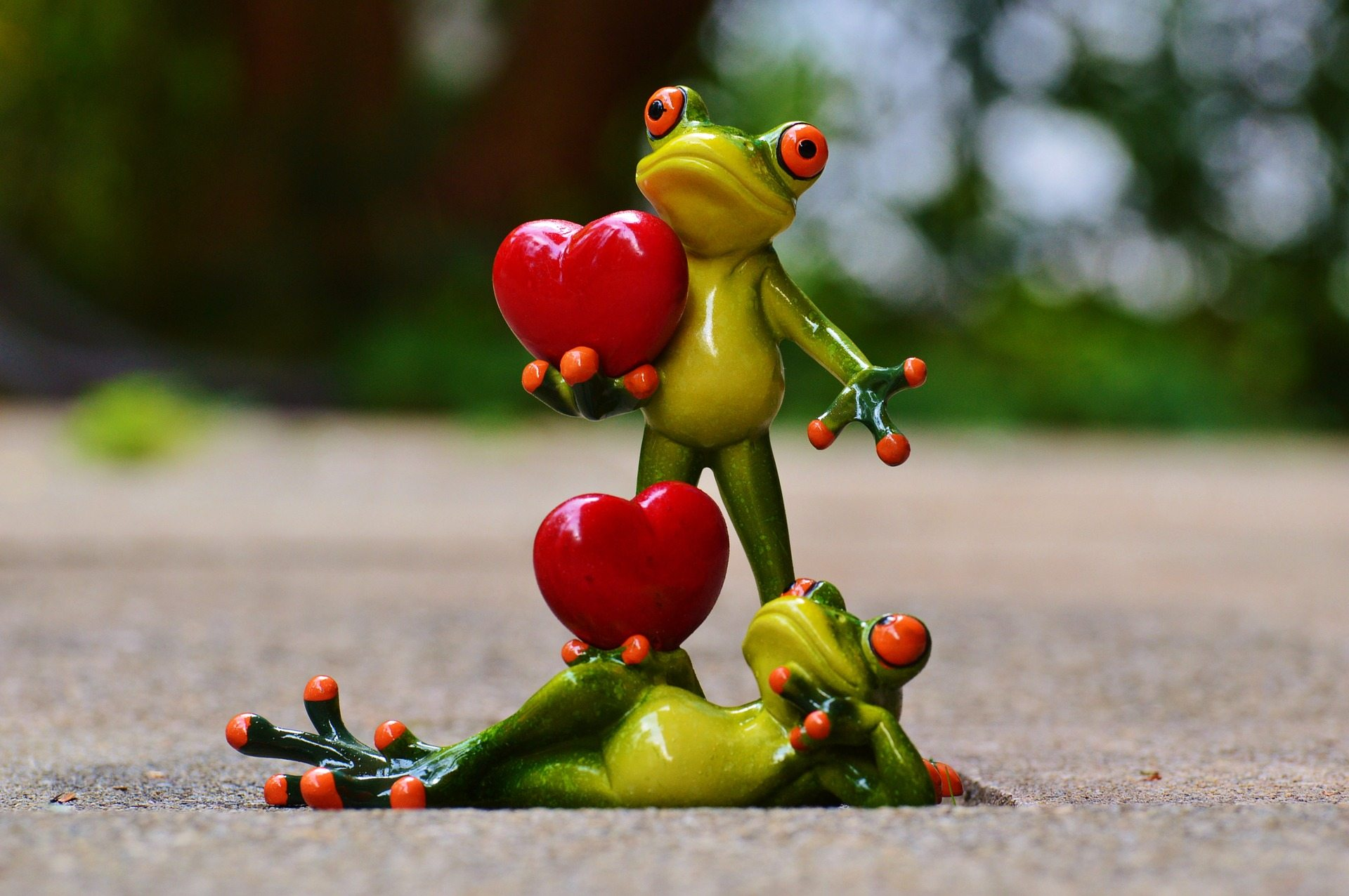 Celebrations Pixabay frogs-903176_1920