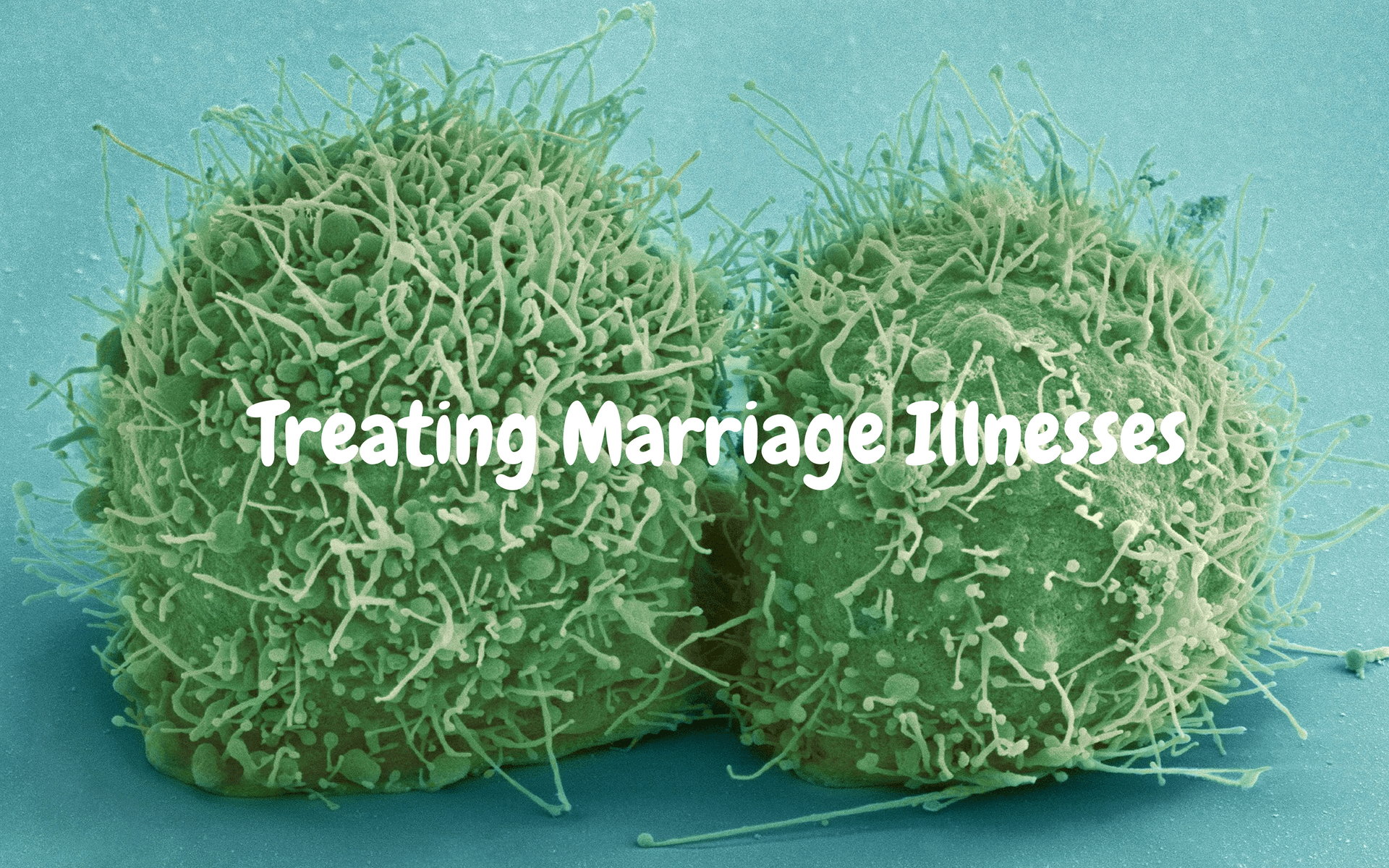 Treating Marriage Illnesses - Pixabay - Canva