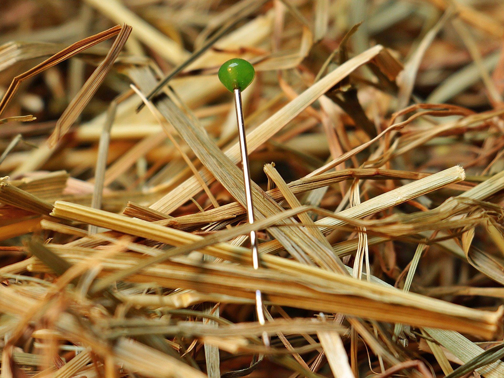 Women win - Pixabay needle-in-a-haystack-1752846_1920