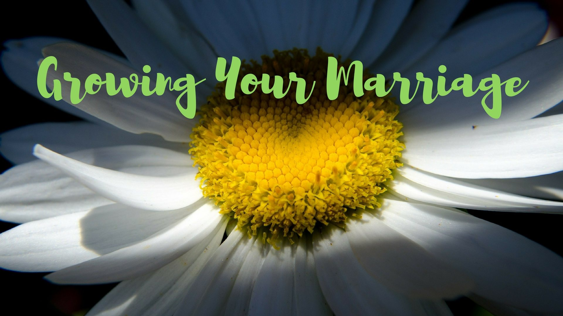 Growing Your Marriage - Pixabay - Canva
