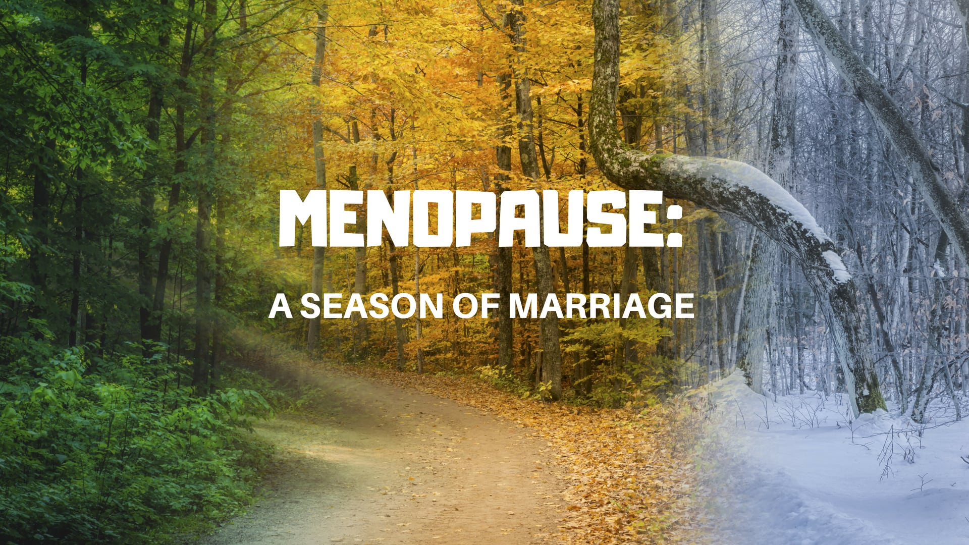 MENOPAUSE_ A Season - Stock Adobe - Canva