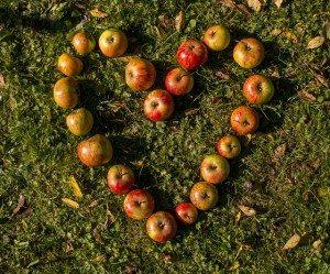Fruit Pixabay heart-980894_640