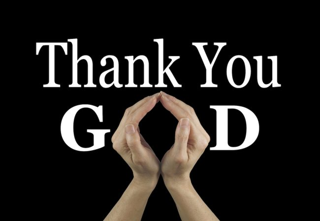 Thank you Thanksgiving - AdobeStock_92240130 copy
