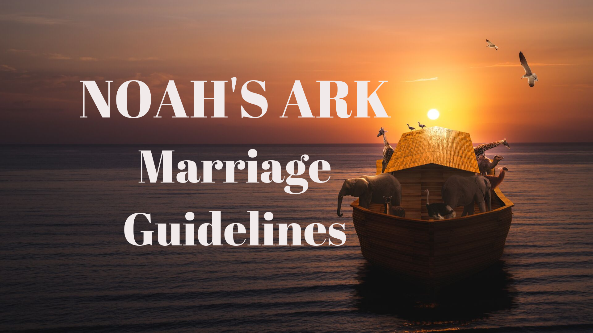Noah's Ark Guidelines - Adobe Stock - Canva